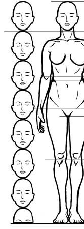 how to draw the human figure female proportions