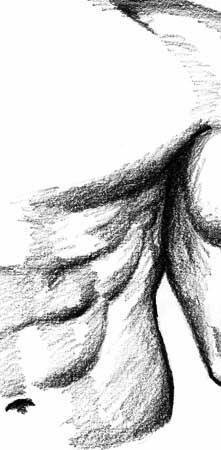 female human head drawing