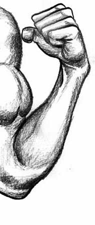 How to draw the human figure - Figure Drawing